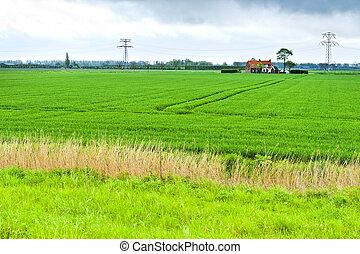 elkísér, vidék, mezőgazdaság, megjavult