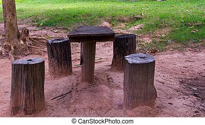 elnökké választ, asztal, erdő