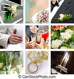 elpirul fénykép, állhatatos, esküvő