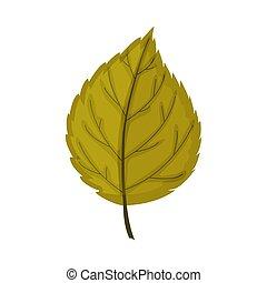 elszigetelt, ősz, fehér, levél növényen, háttér.