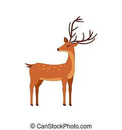 elszigetelt, őz, háttér., állat, karikatúra, vektor, ábra, fehér, design., ikon