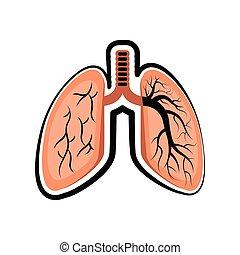 elvág, skicc, lung., színezett, emberi