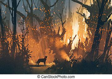elveszett, erdő