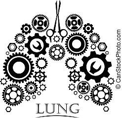 elvont, elkészített, tüdő, fogaskerék-áttétel, emberi