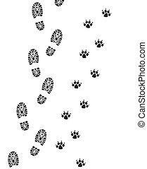 ember, lábfej, kutya, nyomtatványok