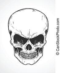 emberi koponya