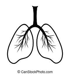 emberi, sematikus, tüdő, clipart, illustration., egyszerű, rajz, orvosság, organ., skicc, árnykép, tüdő