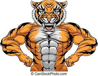 erős, kabala, tiger, sport