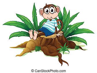 erdő, fáradt, majom, felül, ülés
