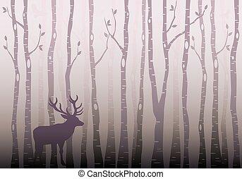 erdő, fa, vektor, nyírfa