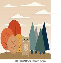 erdő, hord