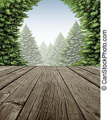 erdő, keret, tél, fedélzet