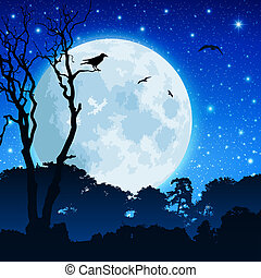 erdő, táj, hold