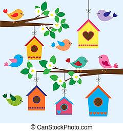 eredet, birdhouses