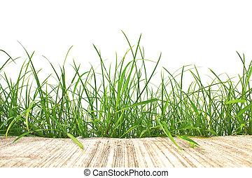 eredet, elszigetelt, cement, háttér., zöld, friss, fehér, fű, út