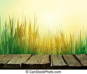 eredet, háttér, fű