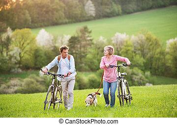 eredet, kutya, idősebb ember, kívül, párosít, gyönyörű, bicycles, nature.