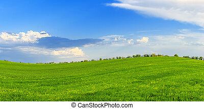 eredet, napos nap, zöld kaszáló