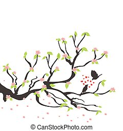 eredet, szilva fa, madarak, szerető