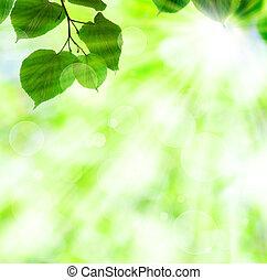 eredet, zöld, nap, zöld, gerenda