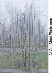 esőcsepp, ablak, motívum