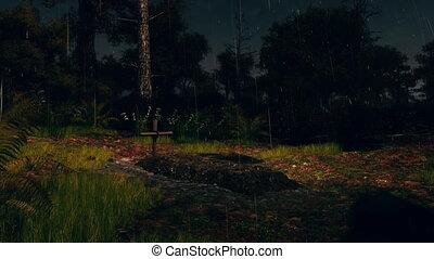 esős, kísérteties, 4k, éjszaka, friss, komoly, erdő