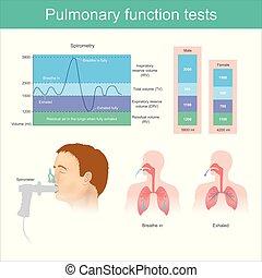 exhaling, fully., próba, levegő, lélegzik, estély, tüdő, tests., tüdő-, hangerő, közben