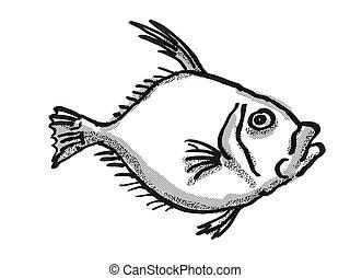 ezüst, rajz, aranydurbincs, zealand, retro, fish, új, karikatúra