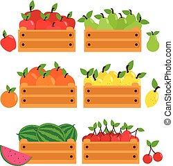 fából való, gyűjtés, crates., vektor, ábra, gyümölcs
