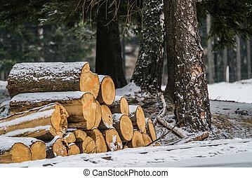 fából való, nagy, cölöp, állomást bemér, hó