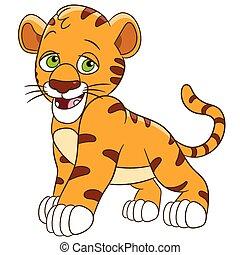félénk, kölyök, tiger