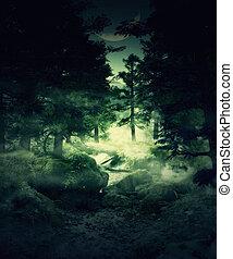 félhomály, erdő