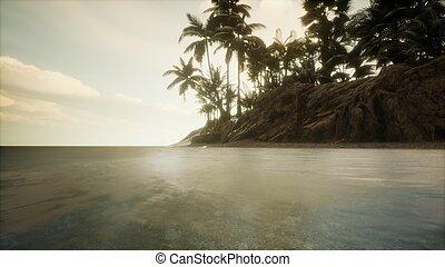 félhomály, tengeri, tengerpart, tropikus, bámulatos, lágy