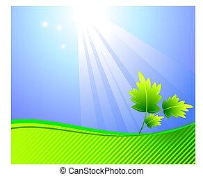 fénysugár, levél növényen, háttér, nap