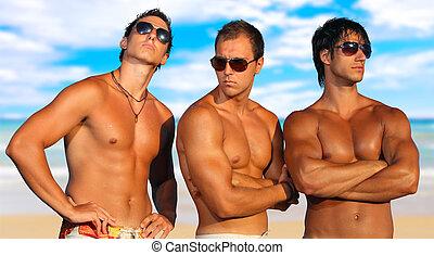 férfiak, tengerpart, bágyasztó