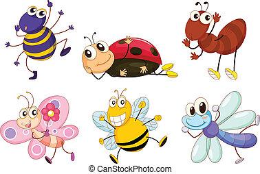 férgek, különböző, rovar