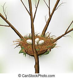 fészekben lévő tojás