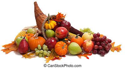 föld, fehér, ősz, bőségszaru