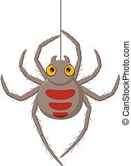 függő, karikatúra, háló, pók