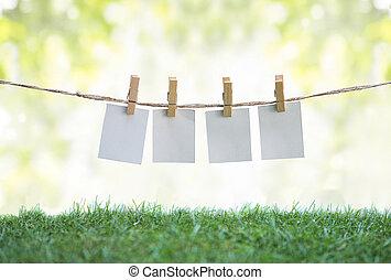 függő, mező, dolgozat, ruhaszárító kötél, tiszta