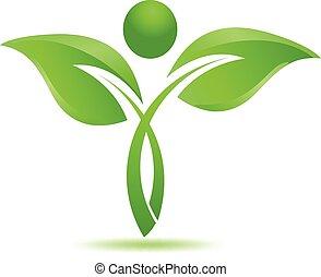 füvészkönyv, jel, természetes, őt lap, zöld