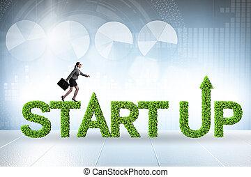 főváros, start-up, kockázat, fogalom, zöld