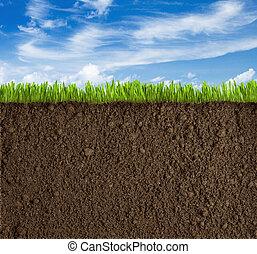 fű, ég, talaj, háttér