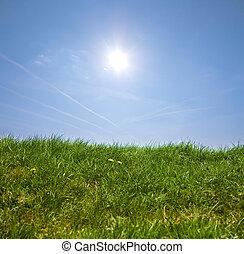 fű, blue zöld, ég