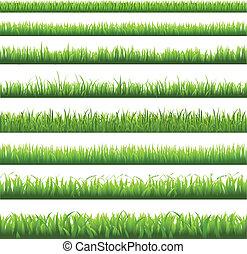fű, határ, zöld