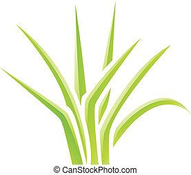 fű, zöld, sima, ikon