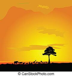 fa, árnykép, átáll állat, fekete