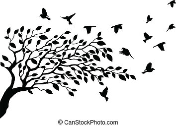 fa, árnykép, madár