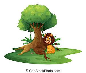fa, ülés, alatt, nagy, oroszlán