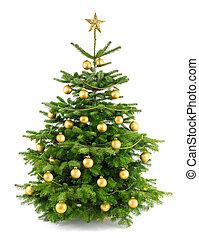 fa, buja, dísztárgyak, arany, karácsony